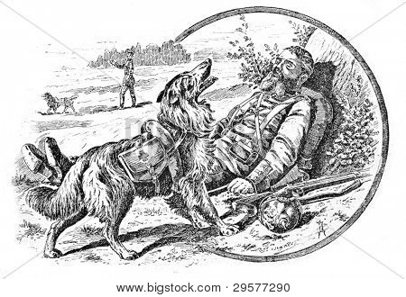 Dog rescues injured in the war. Engraving by Schyubler. Published in magazine
