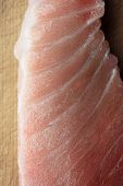Oily fatty meat section of Tuna fish or Maguro, Known as chutoro or otoro. Highly prized meat sectio poster