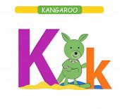 Letter K And Funny Cartoon Kangaroo. Animals Alphabet A-z. Cute Zoo Alphabet In Vector For Kids Lear poster