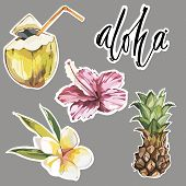 Aloha. Set Of Cute Tropical Stickers With Flowers, Coconut And Pineapple. Cute Stickers, Patches Or  poster