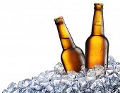 stock photo of ice-cubes  - Two bottles of beer on ice - JPG