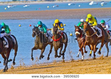 Horse Race On Sanlucar Of Barrameda, Spain, August  2011