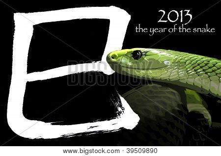 2013 The Year Of The Snake