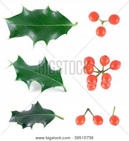 Holly Objects Set