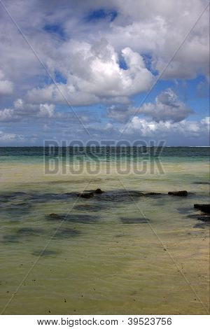 Rock  In Belle Mare Mauritius