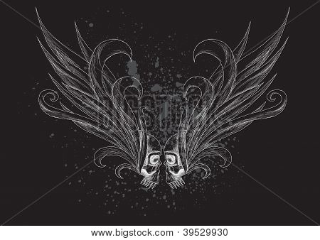 Skulls with wings on black background