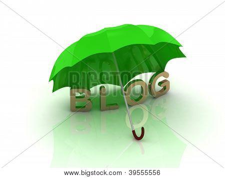 Blog Under The Green Umbrella