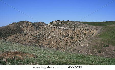 Baleen Wall