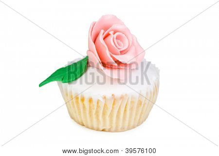 Colorful Cupcake in a white background