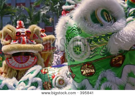 Picture or Photo of Chinese new year lion dance