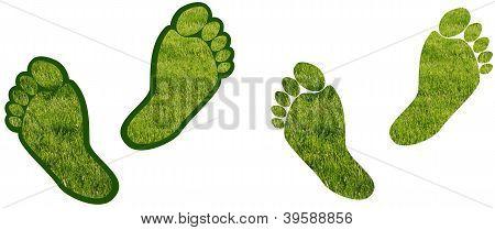 Bare Feet Grass