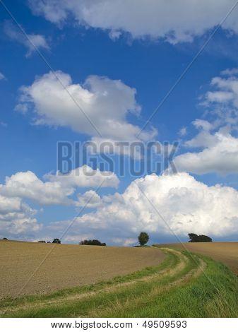 countryside cart way