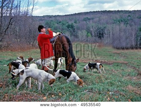 Fox Huntmaster And Hounds