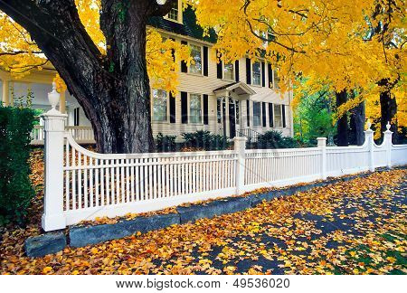 White Colonial Fence