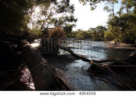 Myora Springs - Stradbroke Island, Queensland, Australia