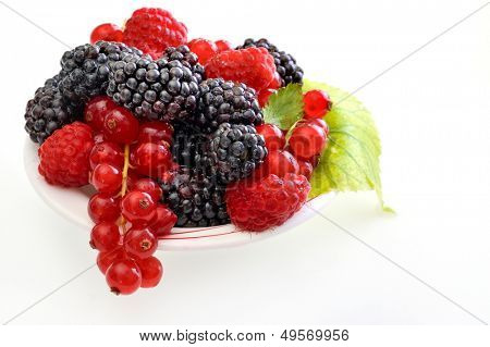 fresh berry fruits