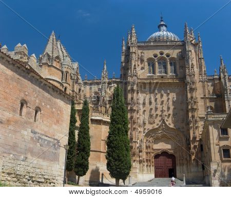 Plateresque Facade Of New Cathedral. Salamanca, Spain