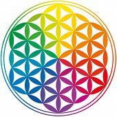 image of symmetrical  - Flower Of Life with rainbow colors - JPG