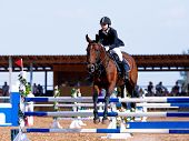 foto of overcoming obstacles  - Equestrian sport - JPG