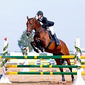 picture of horse face  - Equestrian sport. Show jumping. Overcoming of an obstacle. The sportswoman on a horse. The horsewoman on a red horse. Equestrianism. Horse riding. Horse racing. Rider on a horse.