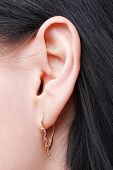 stock photo of human ear  - beautiful female ear with earring close up - JPG