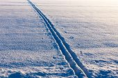 image of nordic skiing  - Diagonal cross country ski tracks in evening sun - JPG