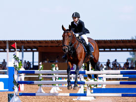 picture of horse-riders  - Equestrian sport - JPG