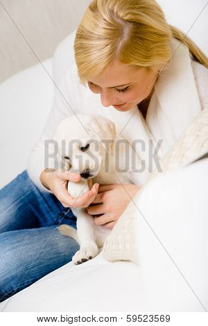 Woman plays with white puppy of Labrador on the white leather sofa
