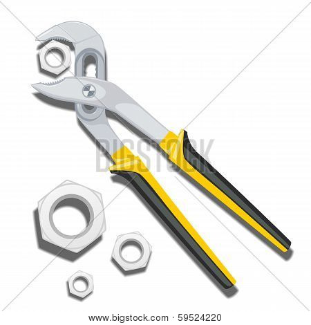 Large Pliers Of Nuts On A White Background