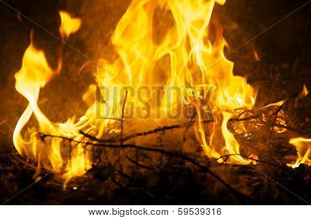 Close Up Of Ceremonial Fire At Night
