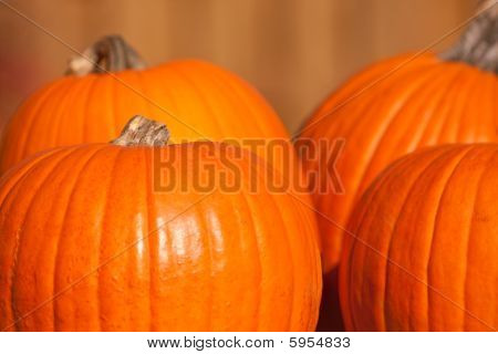 Four Large Orange Pumpkins