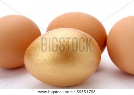 Several Eggs and a Gold Egg