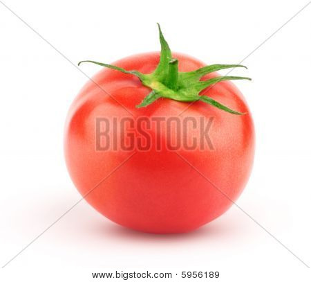 Tomato With Green Leaf