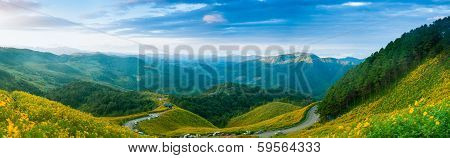Panorama Mountain Forest And Flower Field.
