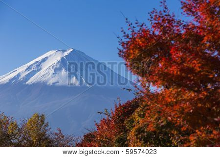 Mt. Fuji With Red Autumn. Kawaguchi-ko. Japan
