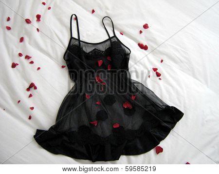 sleepwear. sexy lingerie