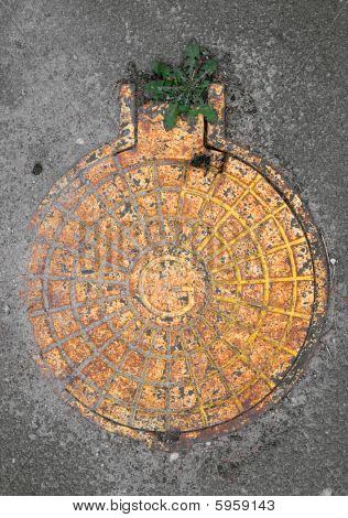Yellow Manhole