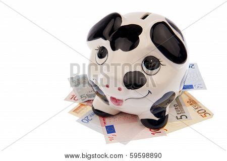 Pig On Bed Of Banknotes