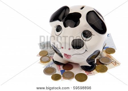 Pig On Bed Of Banknotes And Coins