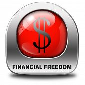 financial freedom dollar sign and economic independence, self sufficient red icon or button.