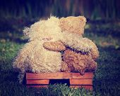 foto of pal  -  two teddy bears on a bench with arms around each other with a retro vintage instagram filter - JPG