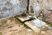 pic of polonnaruwa  - Ruins of ancient toilet in Polonnaruwa in Sri Lanka - JPG