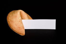 picture of oracle  - Chinese fortune cookie with blank paper strip for your own good luck message - JPG