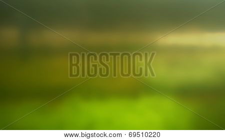 Abstract Blur of a Garden