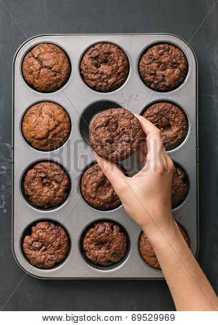 Delicious Chocolate Chip Muffin