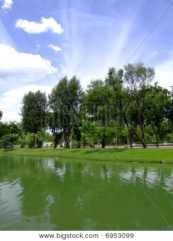 Lake in Lumpini park, Bangkok, Thailland.