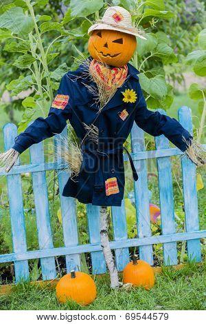 Scarecrow in the garden - Autumn harvests, Thanksgiving vegetable, Halloween