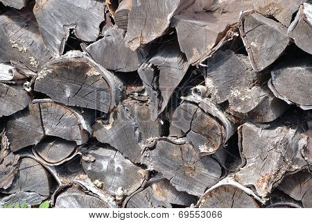 Pile Of Birch Firewood