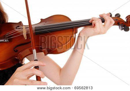 Closeup Of Violin Playing.