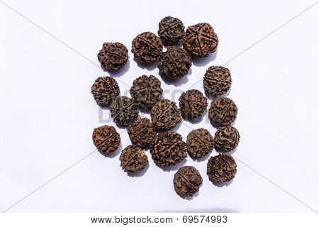 Rudraksha (Tears of Rudra or Lord Shiva) being dried in sun on an isolated background